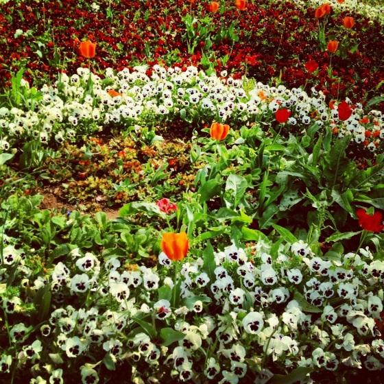 Istanbul in spring