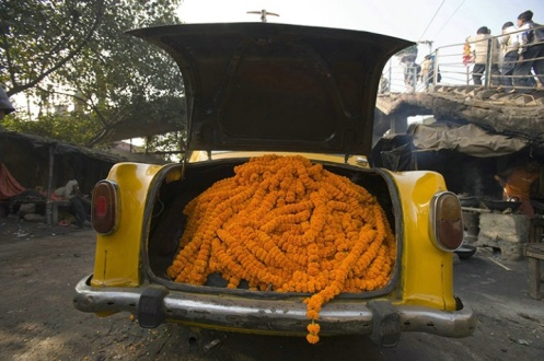 Garlands of Yellow flowers in India, Calcutta
