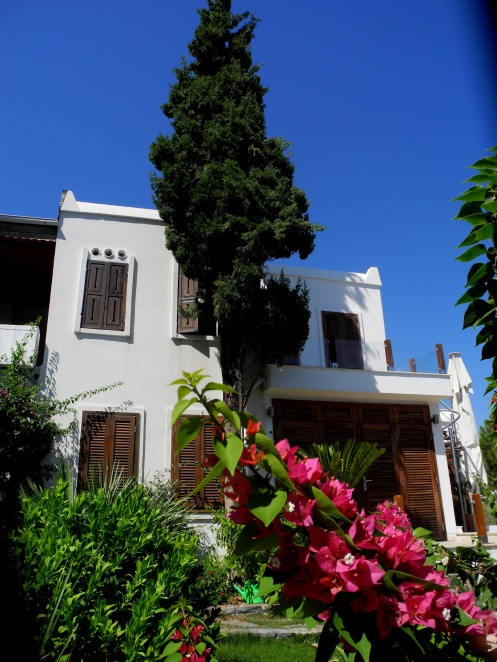 Bodrum Summer House with tree in front