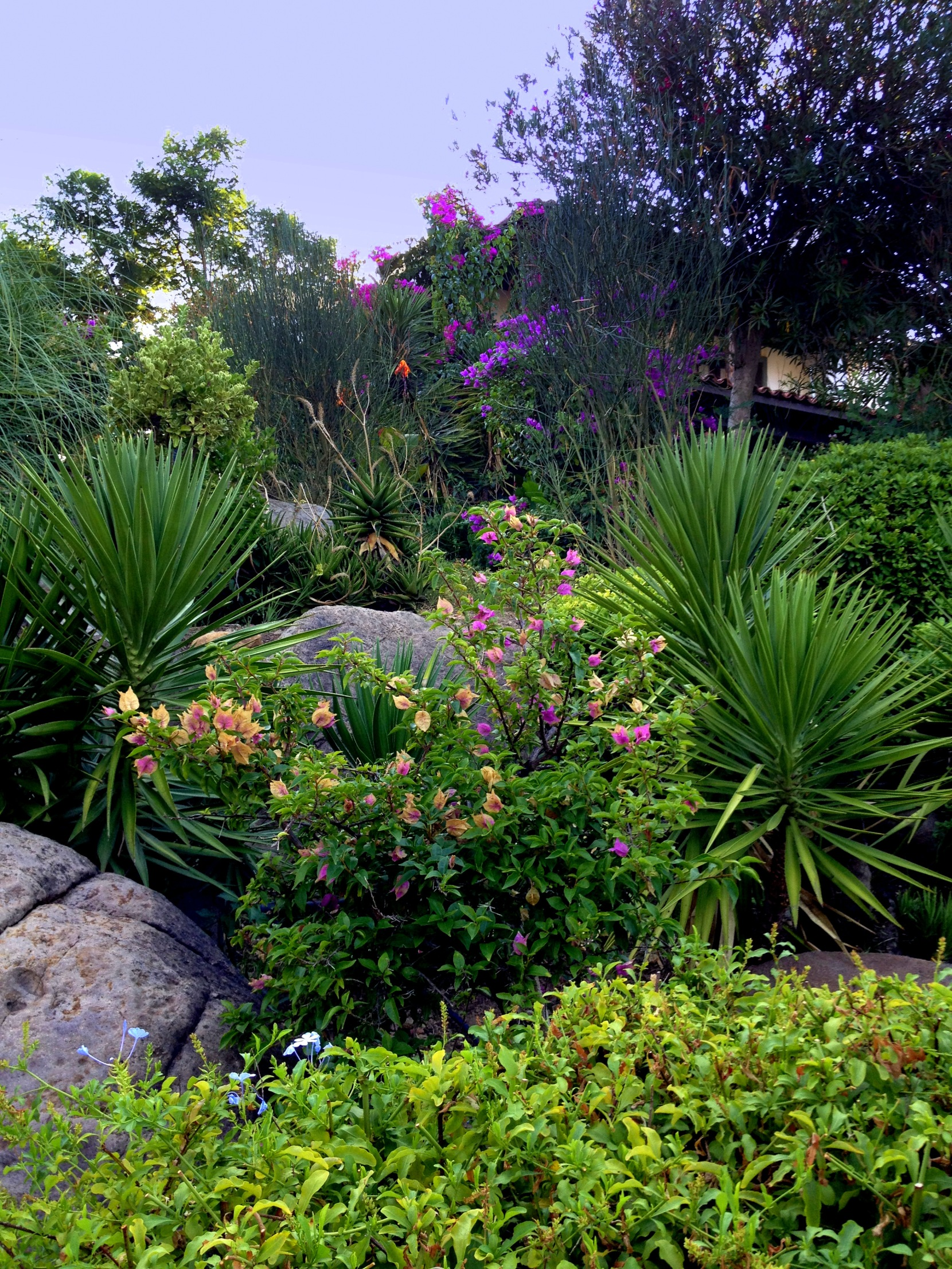 Summer Houses and Garden