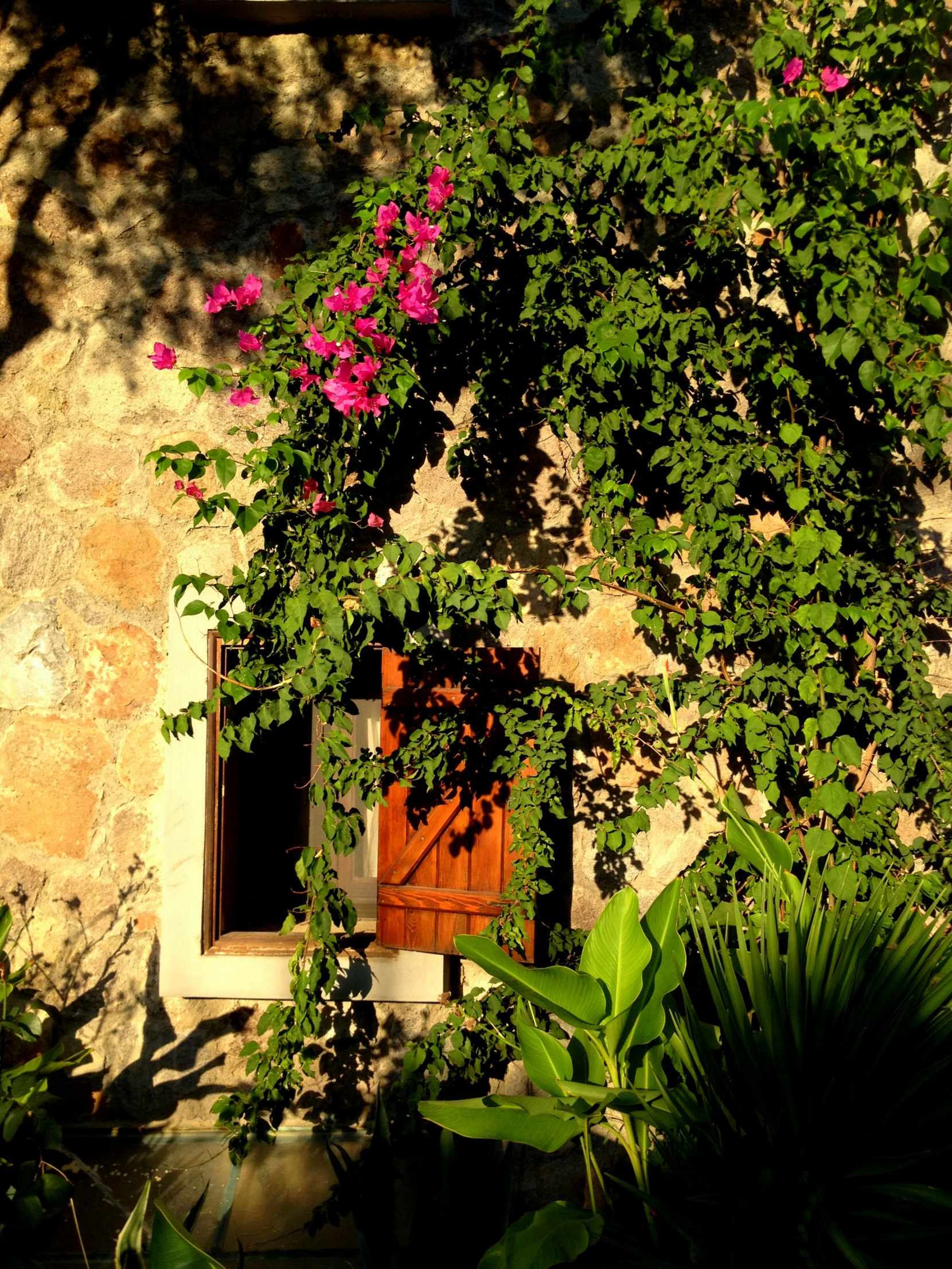 Bodrum Architecture and Stone Houses