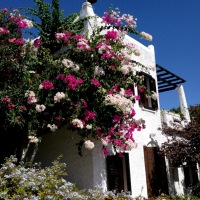 White Bodrum Houses