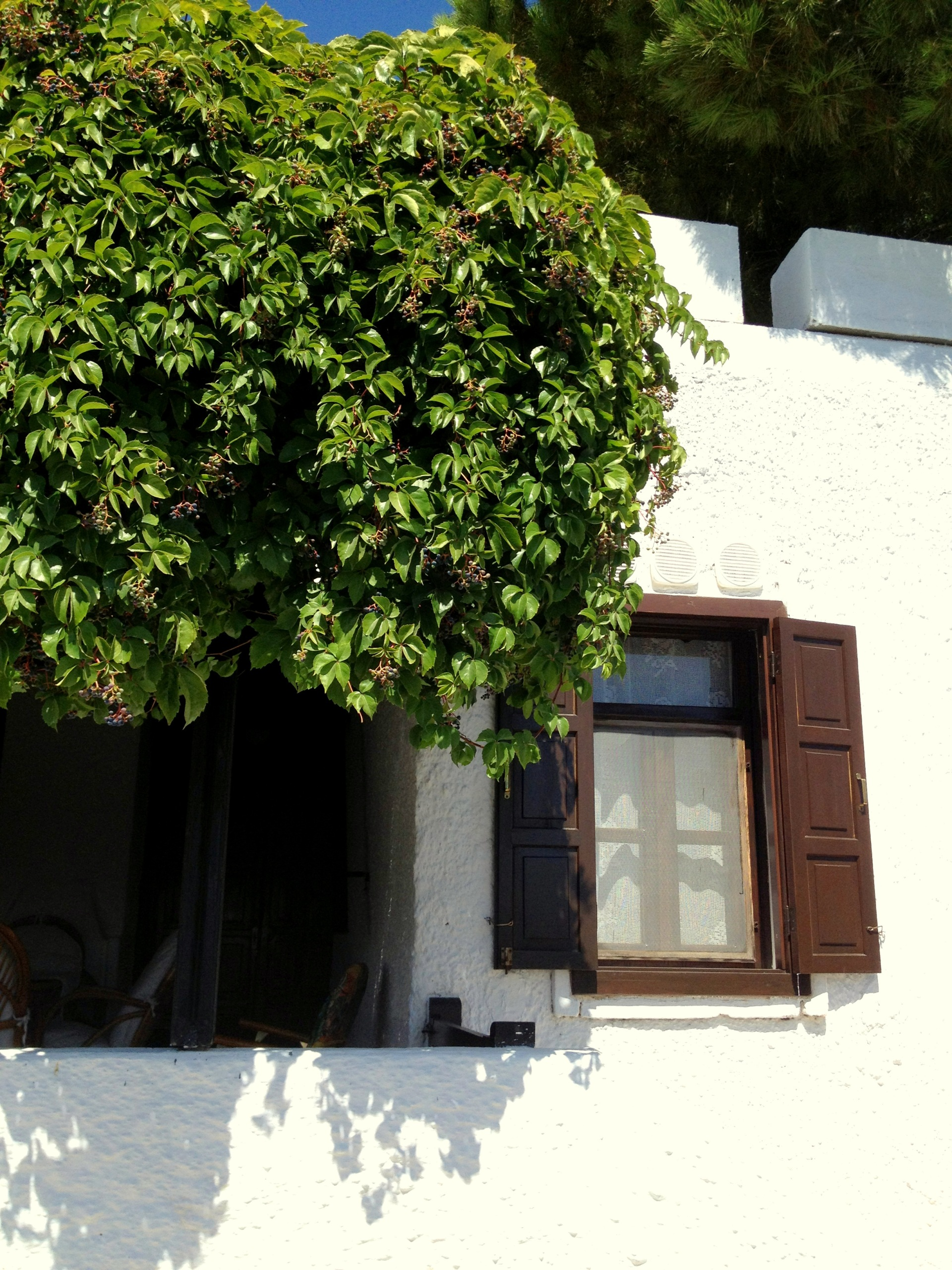 Bodrum Summer House
