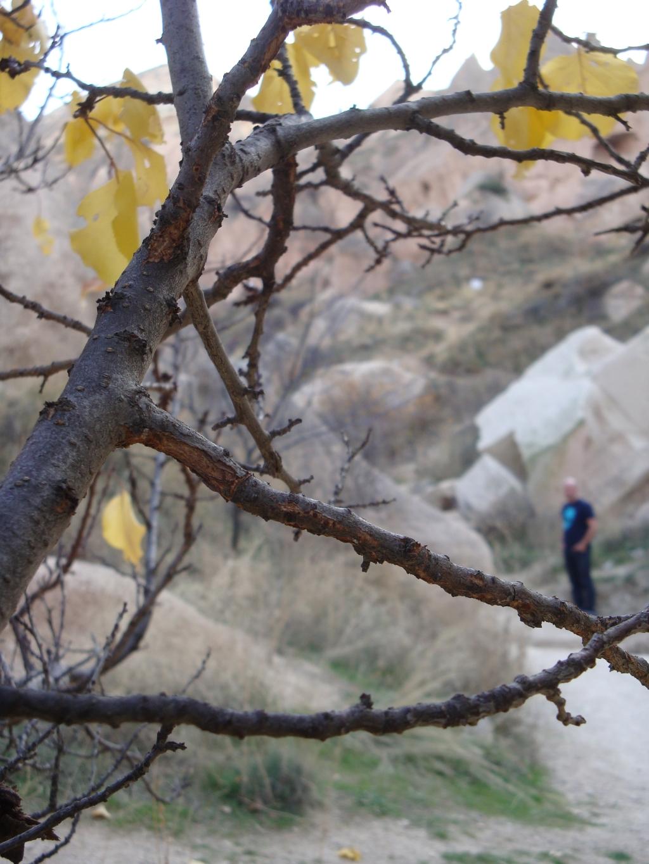 Nature of Cappadocia
